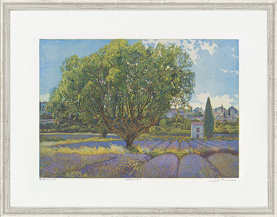 """Picture """"Provence III"""""""