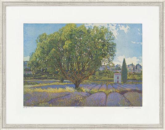 "Günther Hermann: Bild ""Provence III"", gerahmt"