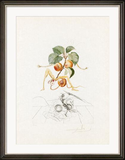 """Salvador Dalí: Bild """"Abricot Chevalier"""" (1969)"""