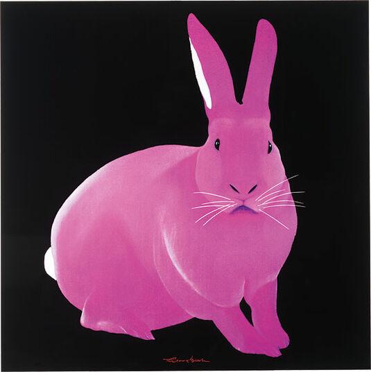 """Thierry Bisch: Bild """"Rabbit"""""""