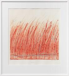 """Bild """"Rotes Gras"""" (2013)"""