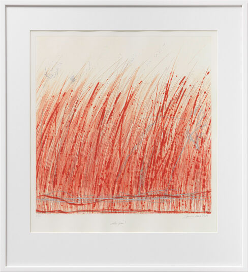"Johannes Haider: Bild ""Rotes Gras"" (2013)"