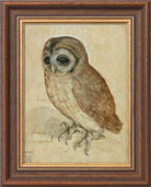"Picture ""Owl"" (1508) in Frame"