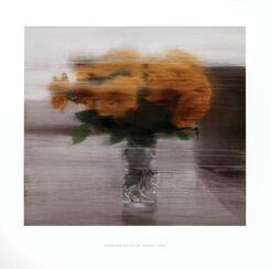 """Bild """"Rosen"""" (1994)"""