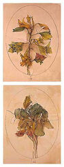 """Bilderset """"Viola tricolor"""" und """"A floral fantasy"""" (1988), ungerahmt"""
