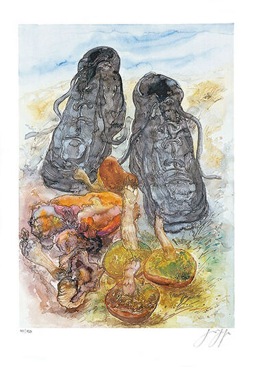 "Günter Grass: Picture ""Fungi & Footwear"""