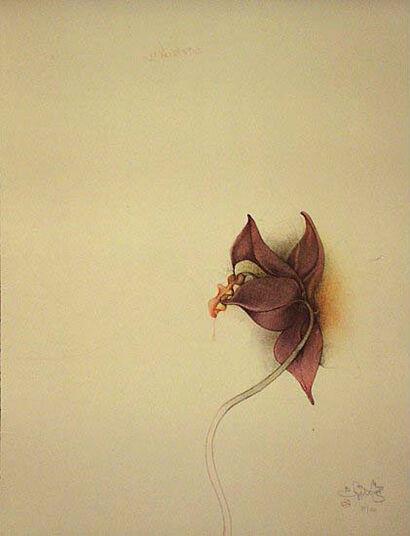 "Bruno Bruni: Picture ""Orchidea III"" (1981)"
