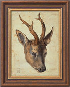 "Picture "" Roebuck Head "" (1514) in frame"