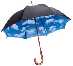 "Stick Umbrella ""Sky"""