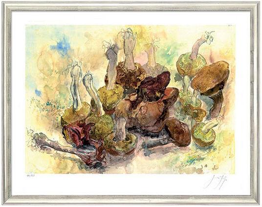 """Günter Grass: Bild """"Stillleben mit Pilzen"""", gerahmt"""