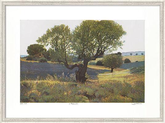 "Günther Hermann: Bild ""Provence I"", gerahmt"