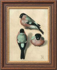 """Bild """"Vogel in drei Positionen"""" (1520), gerahmt"""