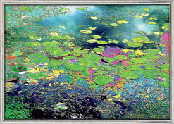 """Fotografik """"Blühender See 01"""" (2007) - nach Monet, gerahmt"""