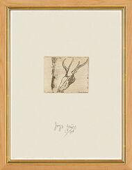"""Bild """"Hirschschädel"""" (1980), gerahmt"""