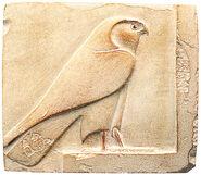 Horus Falcon