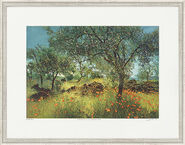 "Picture ""Olive Trees and Corn Poppy"""