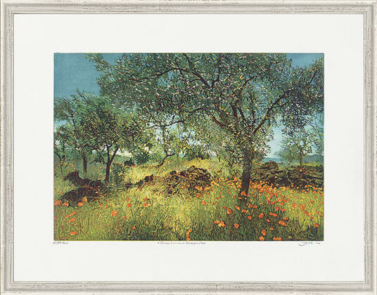 """Günther Hermann: Picture """"Olive Trees and Corn Poppy"""""""