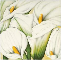 """Bild """"Arums"""" (2004), ungerahmt"""
