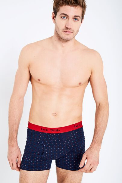 BRIDGENORTH POLKA DOT BOXER SHORT