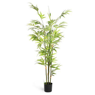 Bambusbaum in Topf, ca H:120cm, grün