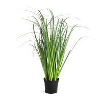 Grasbusch im Topf grün ca H:39 cm