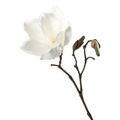 Magnolienzweig weiß ca. L:25,5 cm