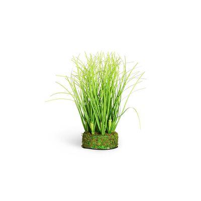 Grasbusch in Erde grün ca L:14,5 cm