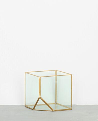 Terrarium cubique doré
