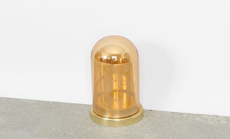Cloche en verre à guirlande led doré