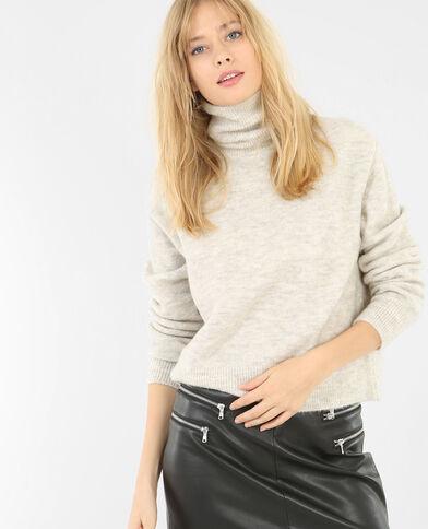 Pullover mit Rollkragen Grau meliert