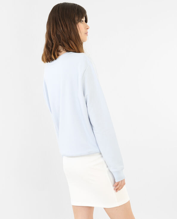 Sweatshirt mit Kaktus-Motiv Himmelblau