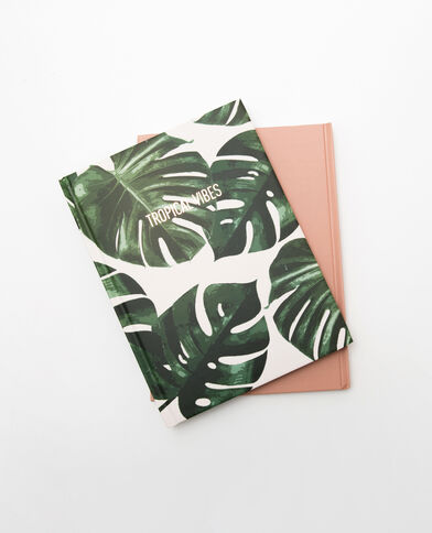 Lot de 2 notebook rose