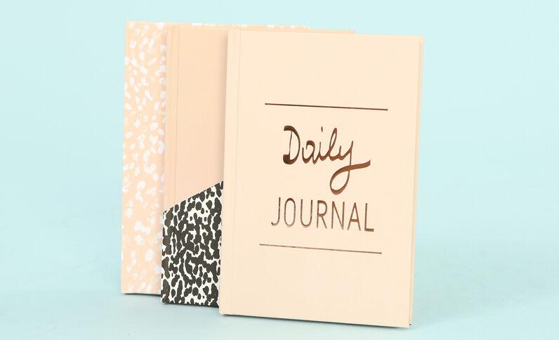 Lot de petits notebook rose poudré