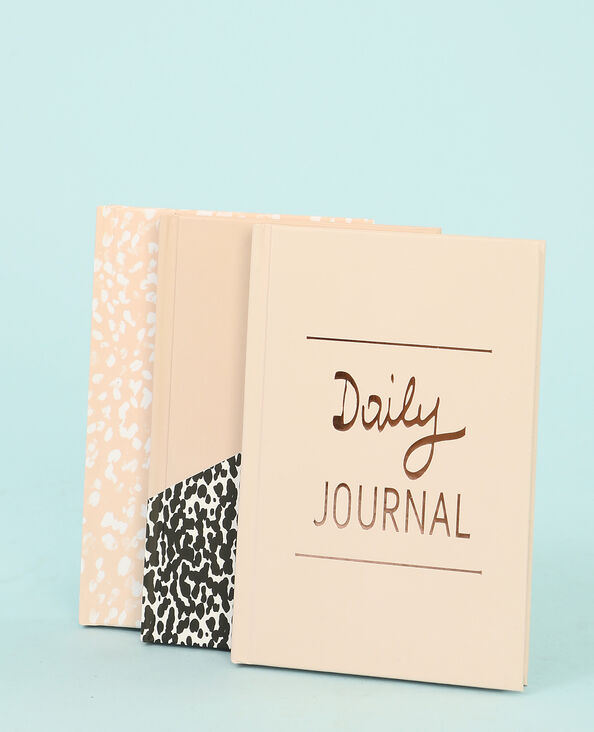 Lotto di piccoli notebook rosa cipria
