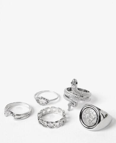 Set van zilverkleurige ringen zilvergrijs