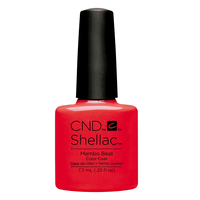 Shellac Rhythm & Heat Collection
