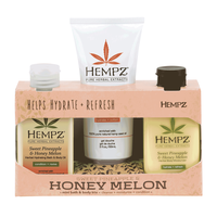 On The Fly Faves - Sweet Pineapple & Honey Melon