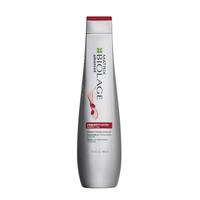 RepairInside Shampoo - Biolage