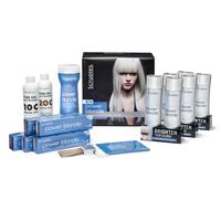 Power Blonde Gel Toner Kit