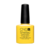 Shellac Power Polish Shades