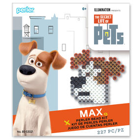 Secret Life of Pets Activity Kit: Max_80-53021