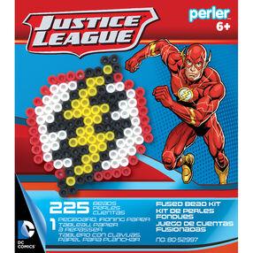 The Flash Activity Kit_80-52997