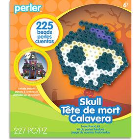 Scary Skull Activity Kit_80-72937
