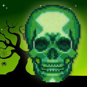 Xray Skull