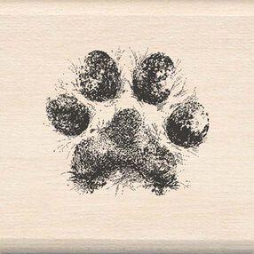 Dog Paw_08813
