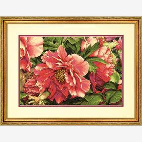 Coral Peonies Counted Cross Stitch_70-35298