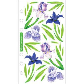 Vellum Irises_SPVM29