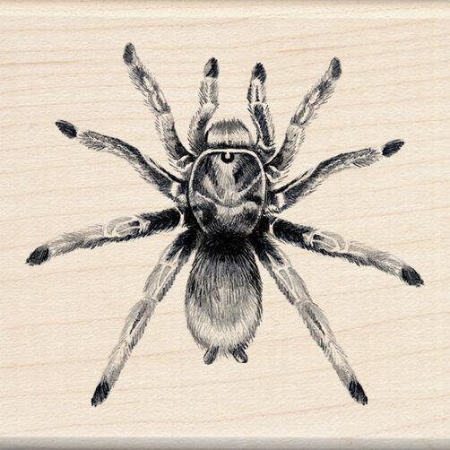 Tarantula Wood Stamp_60-00796