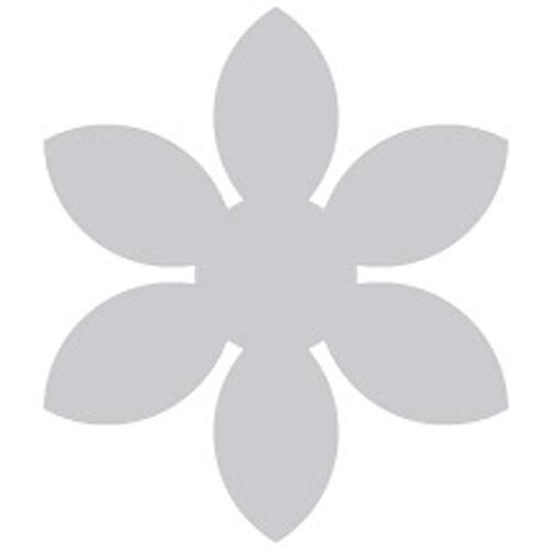 Daisy Punch-3 inch_PSPXL003