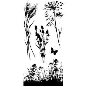 Meadow_60-30496